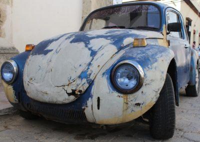 beetle-2085083_1920